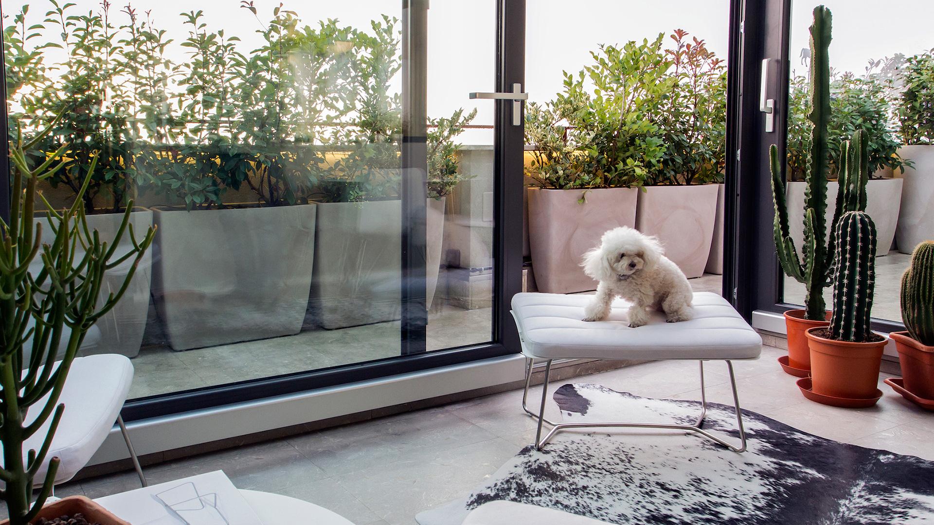 Giardino Dinverno In Casa : Disegnoinopera disegnoinopera casa con dependance giardino d